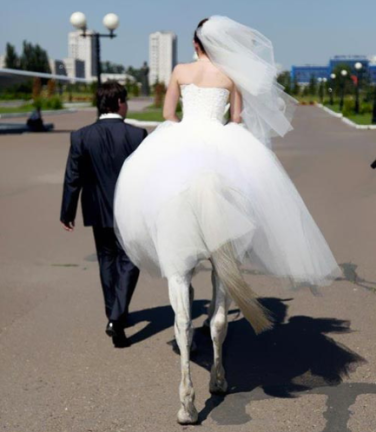 Bride With Horse Legs